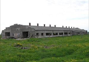 Двор МТФ в д.Сергино